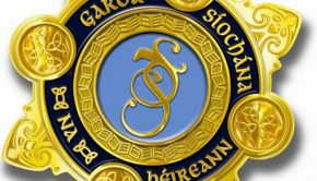 an-garda-siochana-badge
