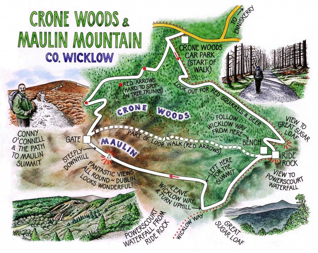 13-Crone-Woods-and-Maulin-Mountain