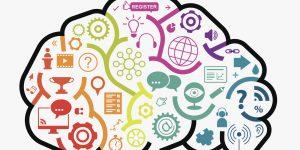 Webinar Brain Concept