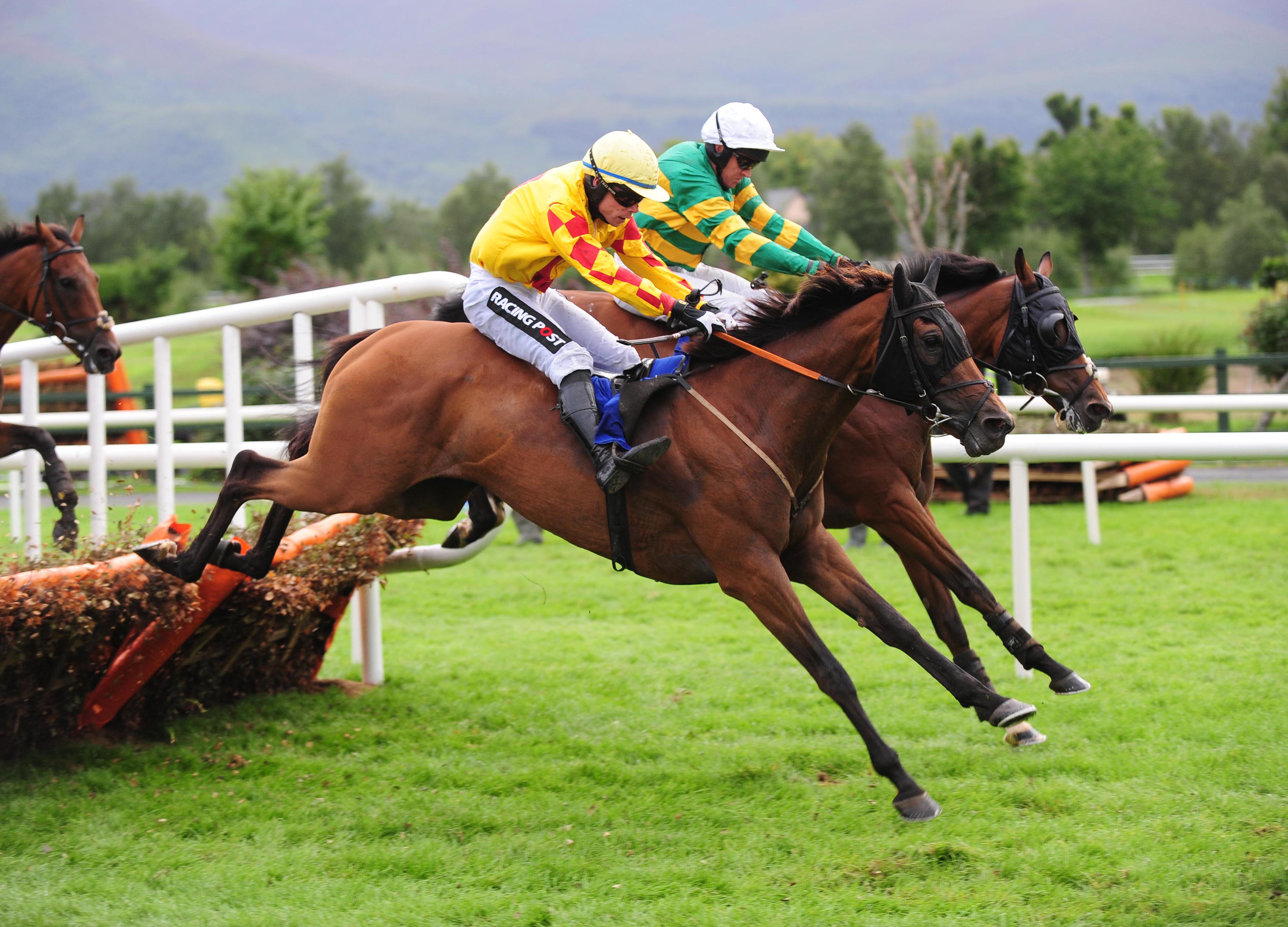 Punchestown Racing Festival (Book Now)